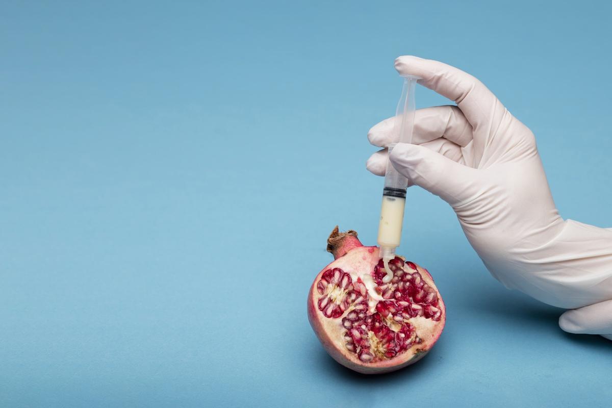Artificial insemination sperm pomegranate