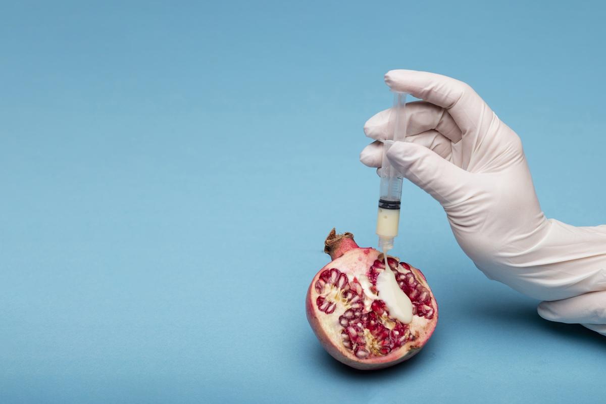 Ovary semen artificial insemination