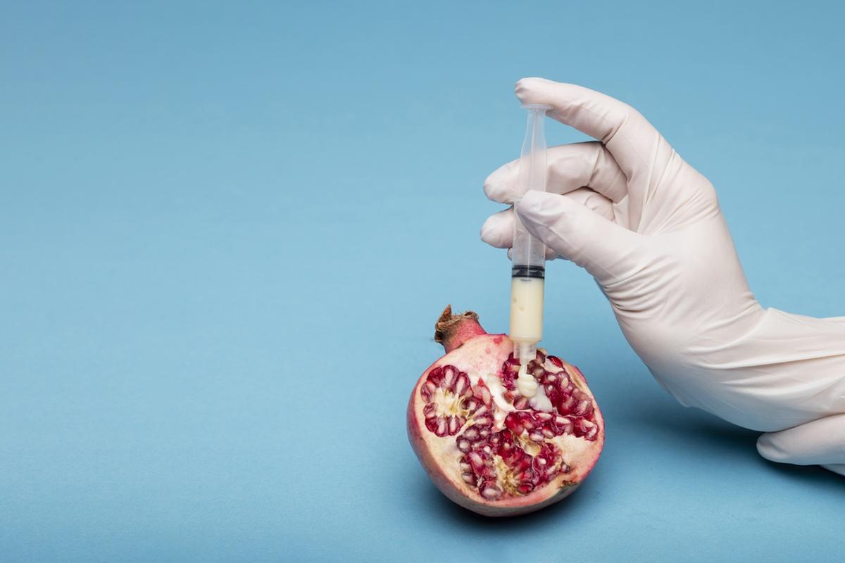 Sex artificial insemination semen