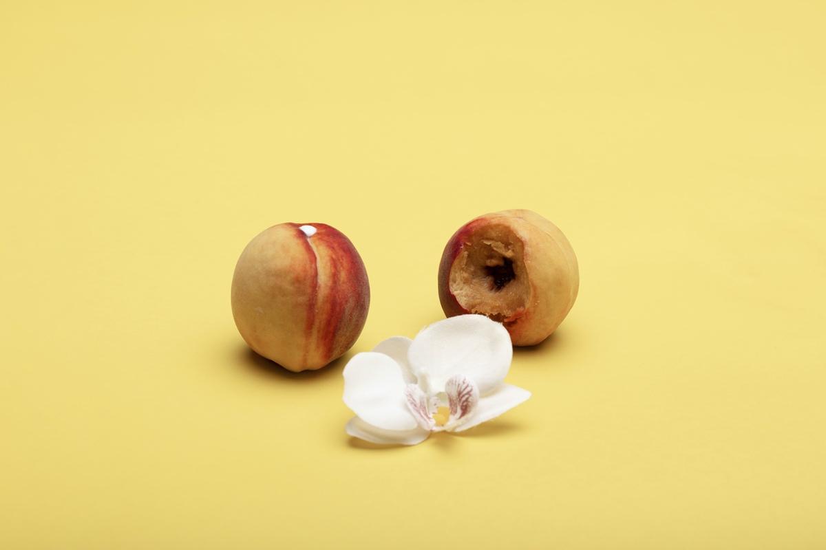 peaches flower