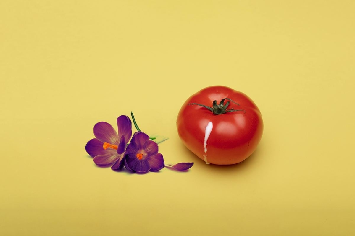 tomato and flower